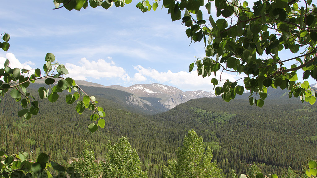 rocky mountains summer time