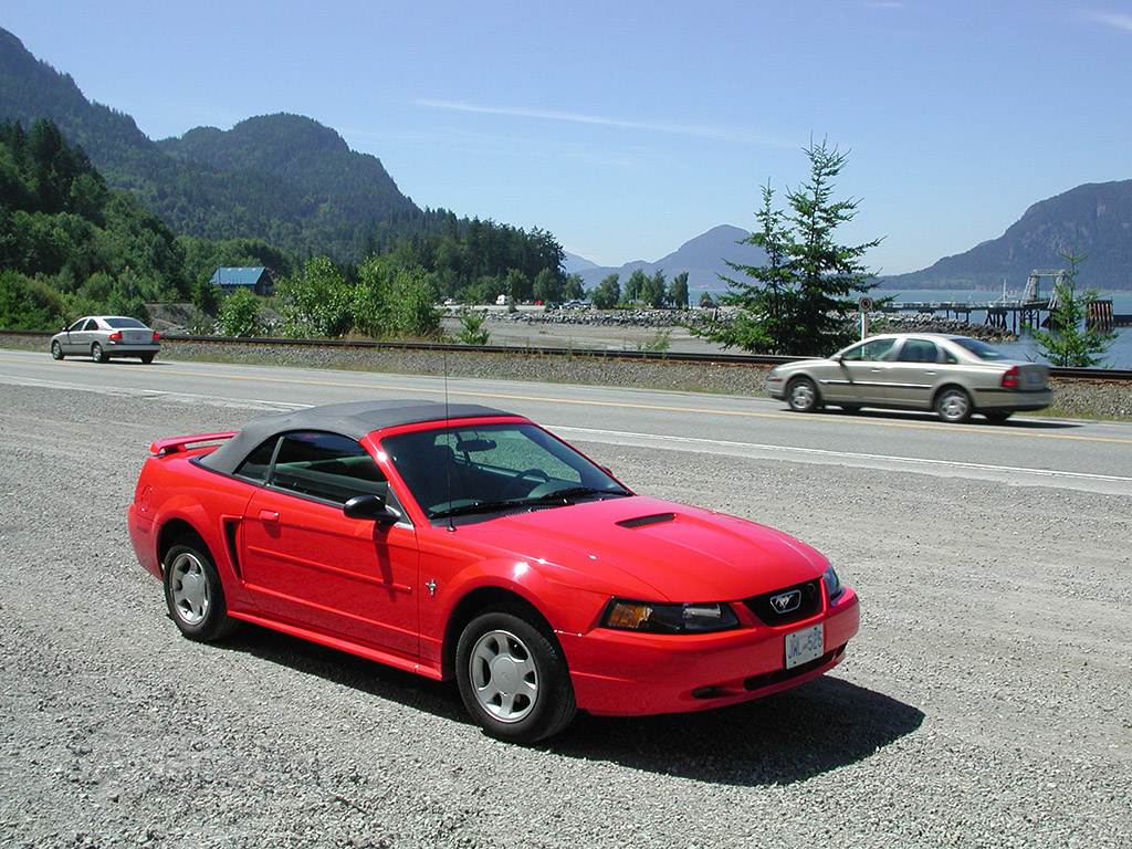 ford mustang rental car