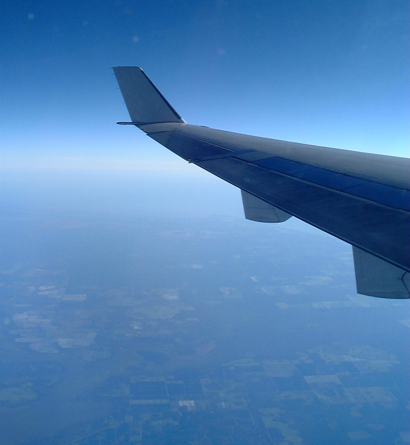 american airlines ms-11 wing view