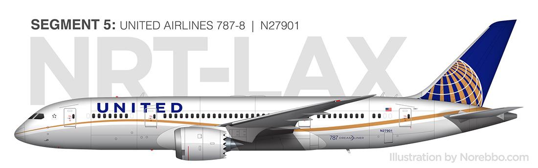 787-8 Dreamliner N27901 illustration