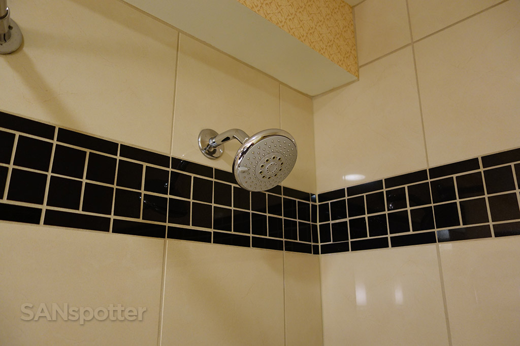 Hilton O'Hare shower head