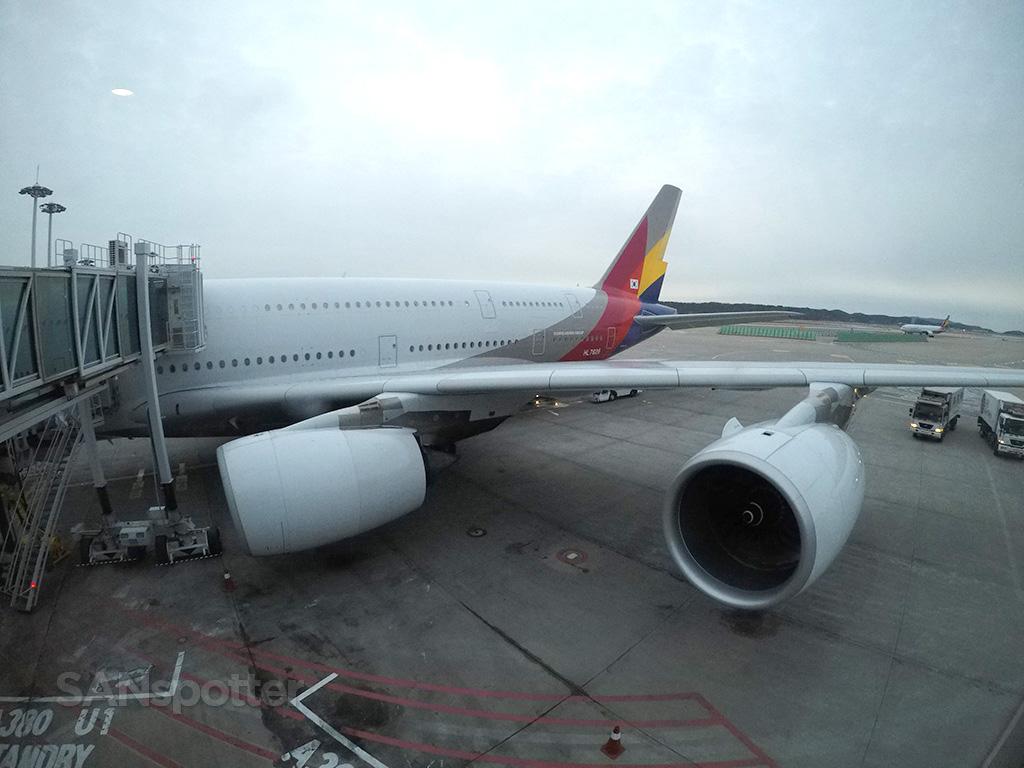 Asiana A380 ICN