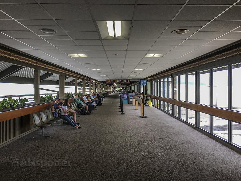 Hilo airport terminal design