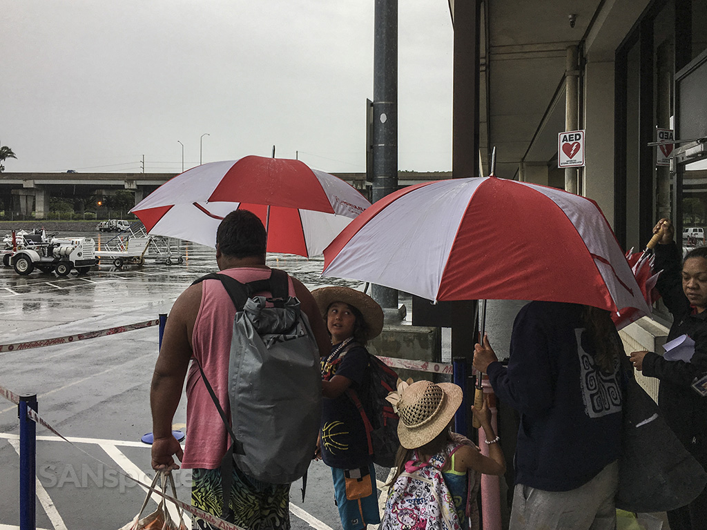 walking to plane in the rain HNL