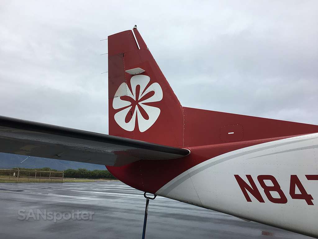moklulele airlines logo