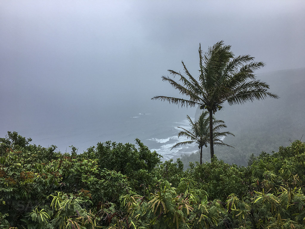hawaii scenery in the rain