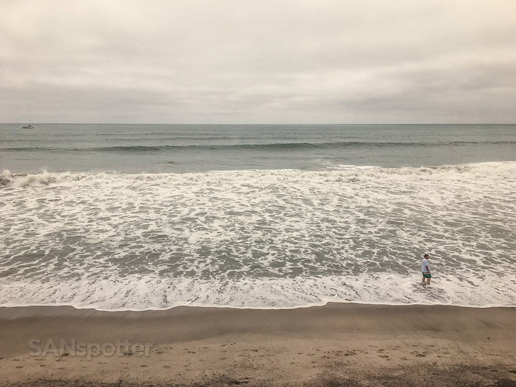Pacific Surfliner ocean view