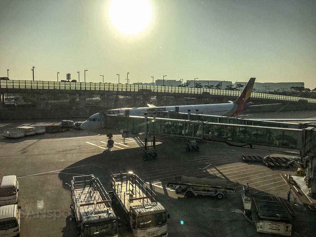 Asiana A330 ICN at gate