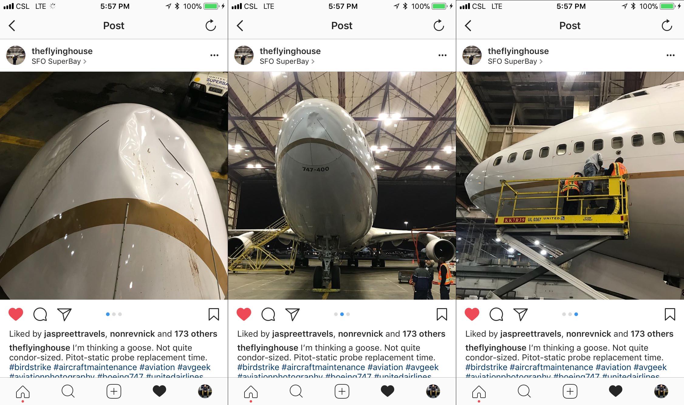 United airlines 747 birdstrike damage