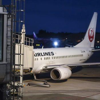 JAL 737-800 NRT
