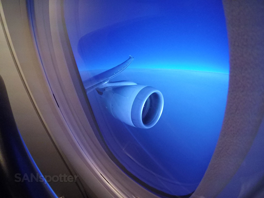 787 wing and engine view