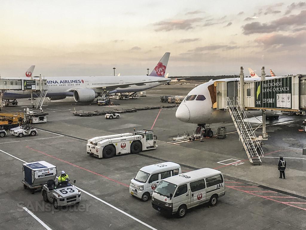 Japan airline 787–8 nose