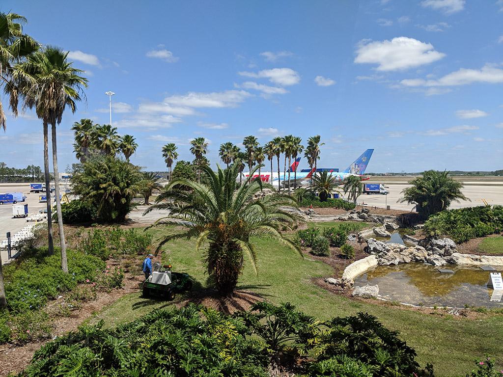 TAM 767-300 Disney livery