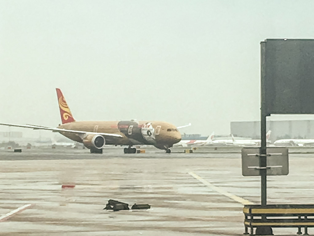 Hainan Airlines 787 panda livery