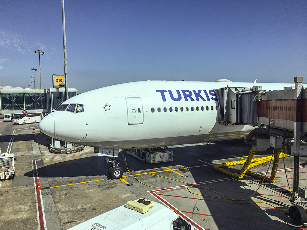 QTurkish Airlines 777–300 nose