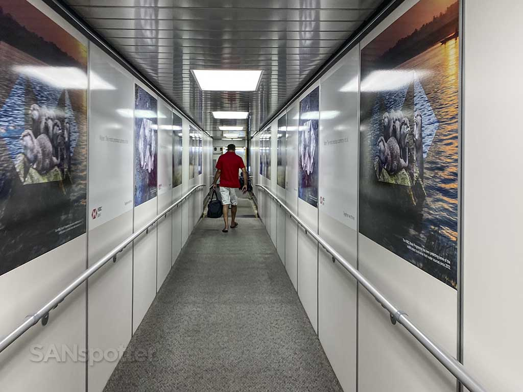 Delta jet bridge posters JFK