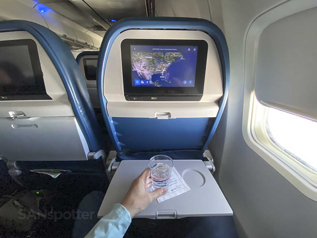 Delta 737-800 economy seat and tray table